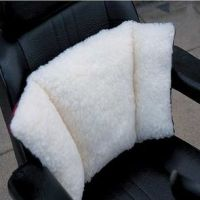 Back Soother Cushion